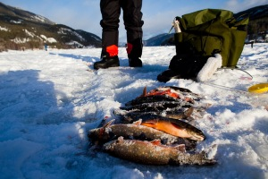 Isfiskerne ved Tinnoset